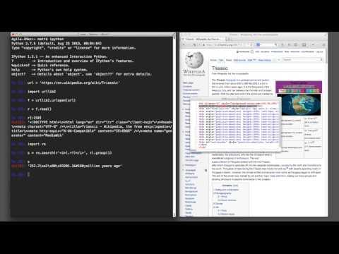 Python snippet: urlopen
