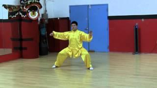 Wang HaiJun (王海军) 18 Posture Chen Essence Form