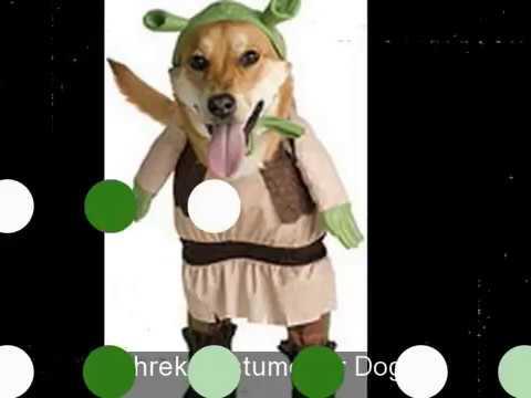 Official Shrek Costumes