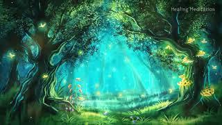 Forest Nature Sounds Relax music