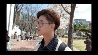 [ Du học Hàn Quốc ] Daily Vlog / Thứ tư đầy nắng - Ngắm hoa đào ở trường/ Minwoo TV - 일상 브이로그