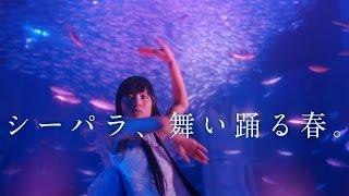 横浜・八景島シーパラダイス「シーパラ、舞い踊る春。桜吹雪」篇