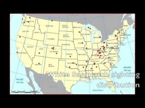 Wisconsin Bigfoot Sighting interviewed by Jeff Andersen
