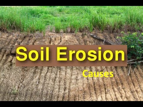 Soil Erosion Causes & Soil Conservation -Video for Kids ...