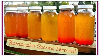 How To Make Fizzy & Flavored KOMBUCHA | Just Like GT's