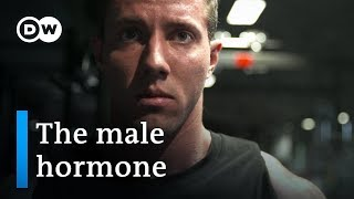 Testosterone -  new discoveries about the male hormone | DW Documentary