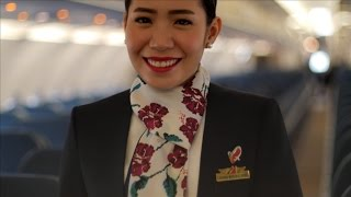 A FLIGHT ATTENDANT'S PROPOSAL (15 YEARS IN THE MAKING)