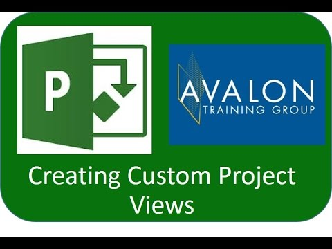 Custom Views in Project 2010