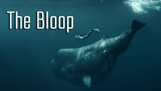 The Bloop: Did a Creature Make the Most Mysterious Sound Ever Recorded in the Ocean?
