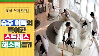 [파!스타 맛집] 슈퍼주니어 이특의 특이한 스트레스 해소법 '청소'