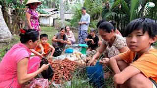 Vô xóm nhỏ bán khoai lang - Hương vị đồng quê - Bến Tre - Miền Tây