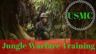 Failure is not an option - Jungle warfare training