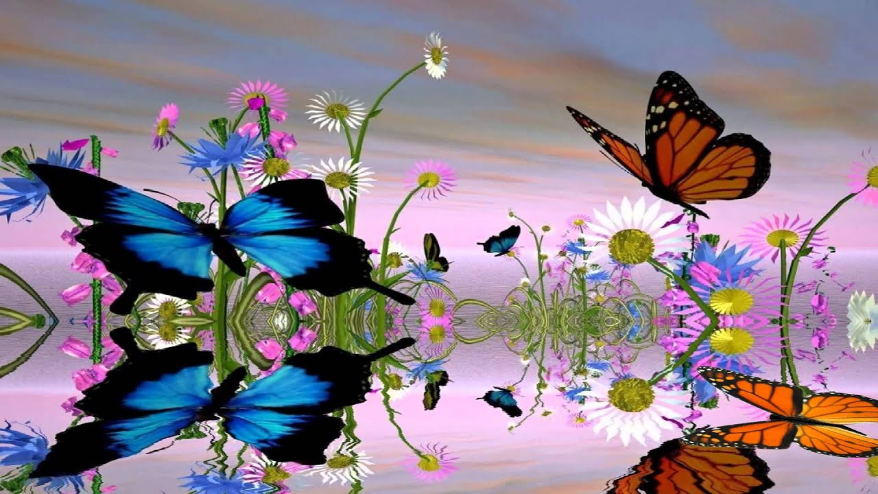 Fantastic butterfly screensaver - Anime moving wallpaper for pc ...