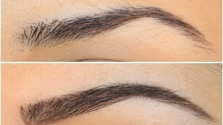 Natural Looking Eyebrows Using Anastasia Beverly Hills