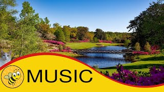 Happy Oboe Music | happy oboe background music | Relaxation