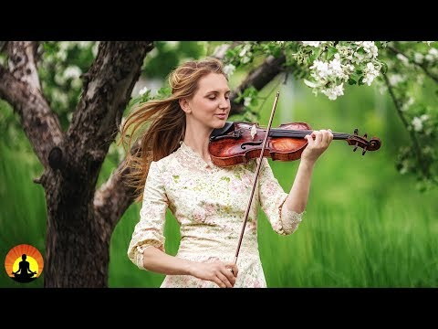 Meditation Music, Relaxing Music for Stress Relief, Classical Music to Relax, Study Music ♫E224