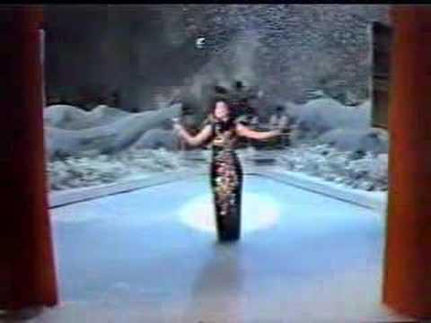 邓丽君:梅花(1981年)