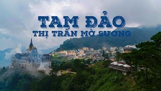 Tam Đảo | Thị Trấn Sương Mù | Cảnh Đẹp VIỆT NAM | Flycam 4K