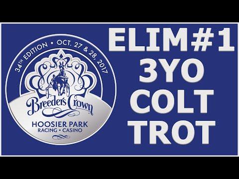 2017 Breeders Crown Elim#1 - International Moni - 3YO Colt Trot