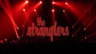 The Stranglers: live 2018