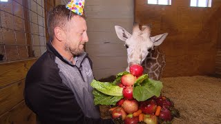 How April The Giraffe's Baby Calf Celebrated His 6 Month Birthday
