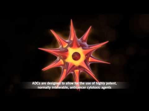 What are Antibody-drug Conjugates (ADCs)?