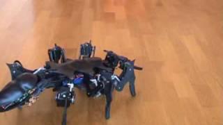 Шестиногий робот двигается как живой