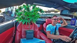 Marijuana Plant Prank! HOLLYWOOD. POLICE Reaction