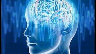 Alpha Waves   Improve Your Memory   Super Intelligence