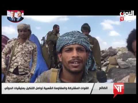 قناة اليمن اليوم - نشرة الثالثة والنصف 17-11-2019