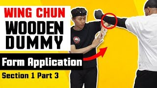 Wing Chun Wooden Dummy Training Form Application Section 1 - Part 3