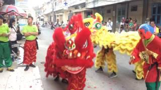 chinese new year 2017 Chinese New Year, Cambodia , BATTAMBANG