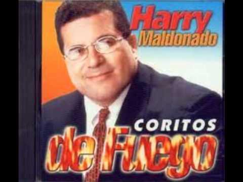 Harry Maldonado El fuego de Dios