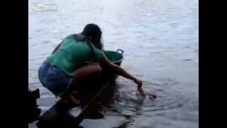 Как правильно ловить пиранью