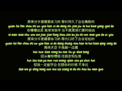 黄丽玲 (Huang Li Ling/A-Lin) - 分手需要练习的 (Simplified Chinese/Pinyin Lyrics HD)