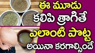 పొట్టచుట్టు కొవ్వు తగ్గాలంటే..? I  Belly Fat I Health Tips in Telugu I ET I Everything in Telugu