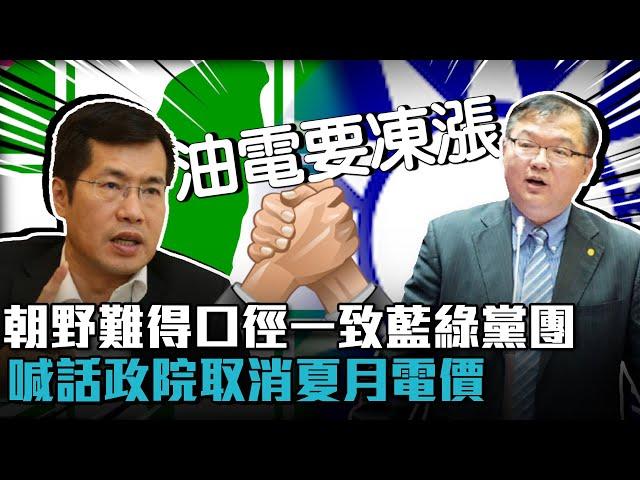 【有影】說到省錢難得意見一致 藍綠黨團皆要求行政院取消夏季電價