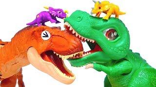 T rex vs T rex jurassic world Dinosaur Battle 티렉스 Vs 티렉스 공룡 대결 쥬라기월드 공룡메카드 공룡배틀 장난감 놀이