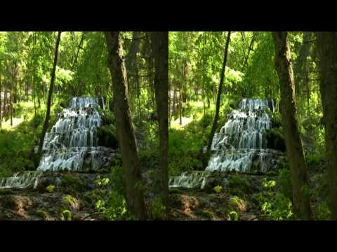 3D HD  Relaxing Video - Magic Forest  - yt3d Youtube 3D