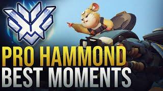 BEST PRO HAMMOND MOMENTS - Overwatch Montage