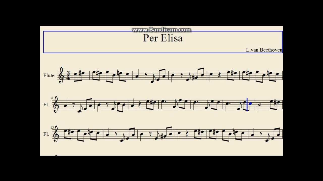 Quinta sinfonia de beethoven - 4 6