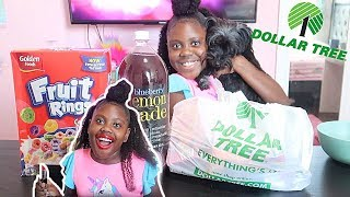 💄I Tried Dollar Tree Makeup | Testing Dollar Tree Items | Niyah Renae