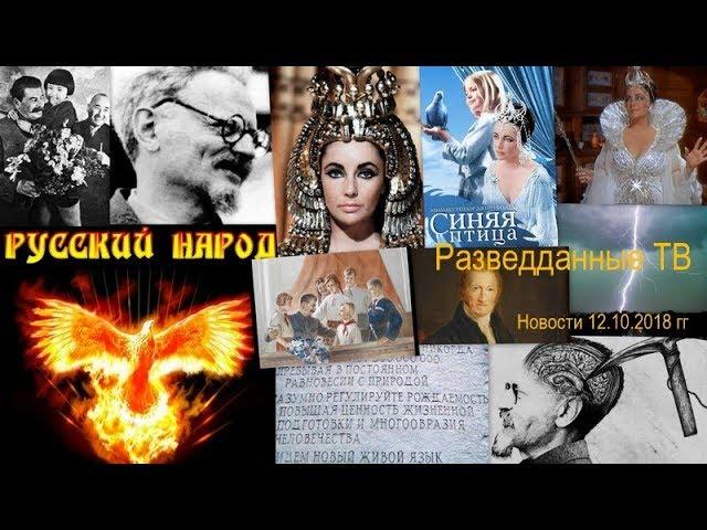 Сергей Будков. Разбор разведданных, 14.10.18