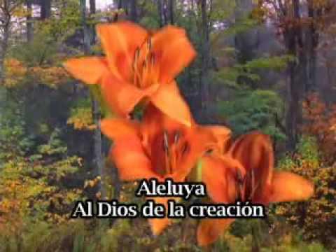Dios de la creación