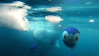 【公式】Pokémon GO - 今、呼び覚まされる広大な新世界へ! シンオウ地方のポケモン登場!