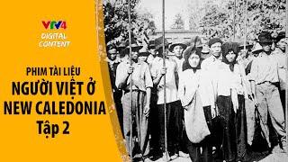 Người Việt ở Tân thế giới - Tập 2