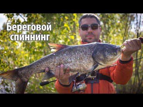 спиннинговая рыбалка на дону видео