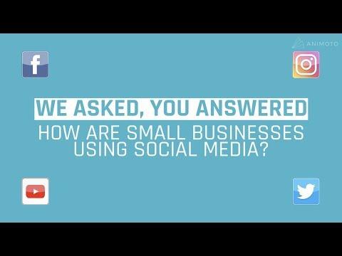 Animoto's Small Business Video Marketing Survey