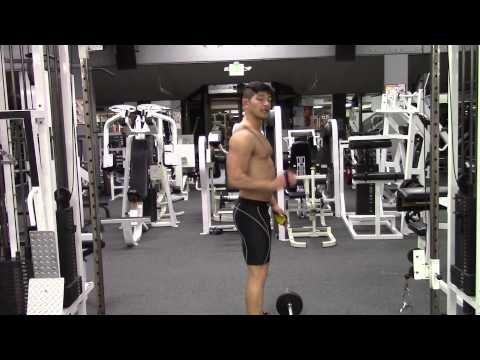 Romanian Deadlift With Barbell   GymPaws® Fitness