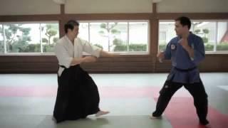 jujitsu vs aikido